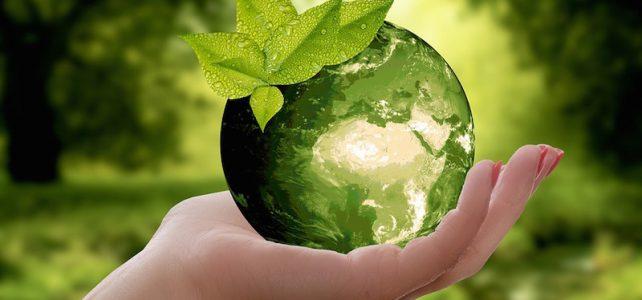 Moda, food, finanza ed energia: le imprese italiane più sostenibili